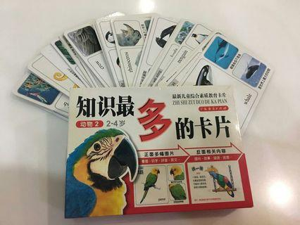 Children's Educational Flash Cards (Mandarin )