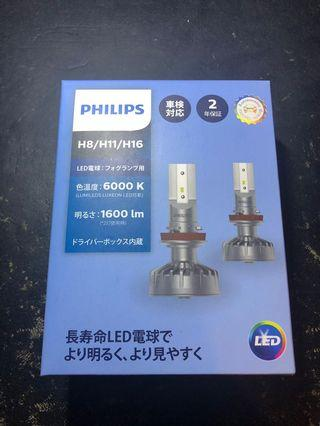 Philips 6000K LED H8/H11/H16