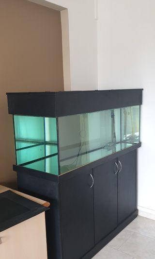 🚚 Fish tank 4ft