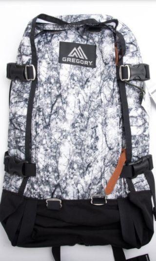 (現貨)Gregory 22L all day Backpack