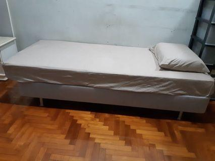 🚚 Bed and mattress and pillow