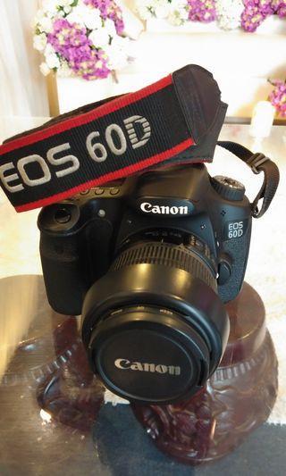Canon 60D + Nissin Mark II Di622 Flash