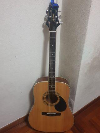 Samick GD100 Acoustic Guitar