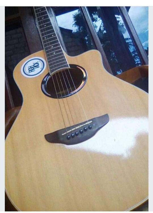 Gitar Yamaha 500 ii