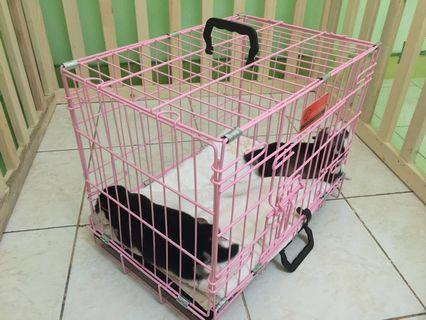 Pet Crate with handle pink L46 x W30 x  H37 cm