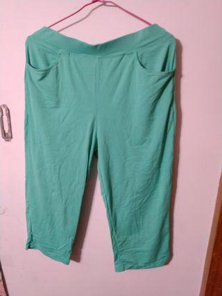 🚚 湖水綠運動褲