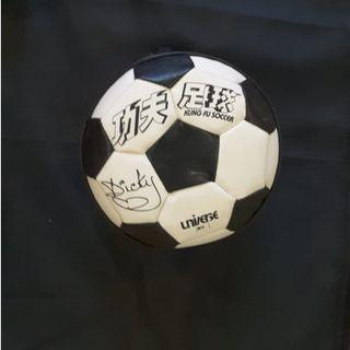 Dicky Kung Fu Soccer VCD Set
