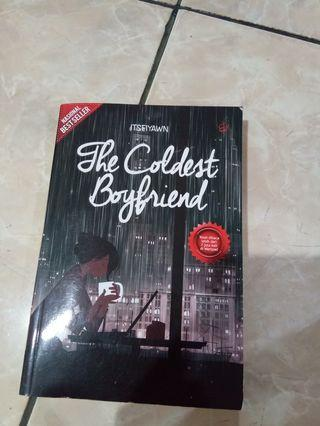 Novel The Coldest Boyfriend