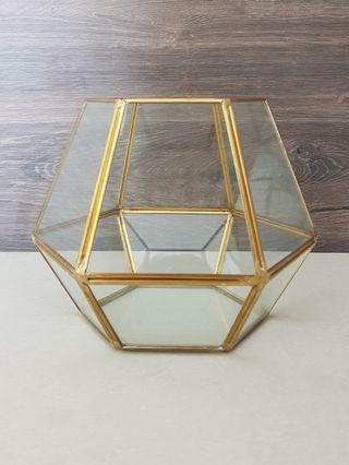 Gold geometric terrarium glass / home decor
