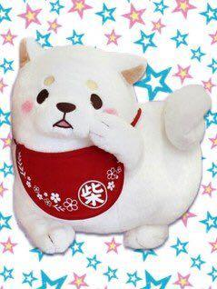 Faithful dog Mitsuboshi Kyunitto Tokimeki BIG Plush Doll