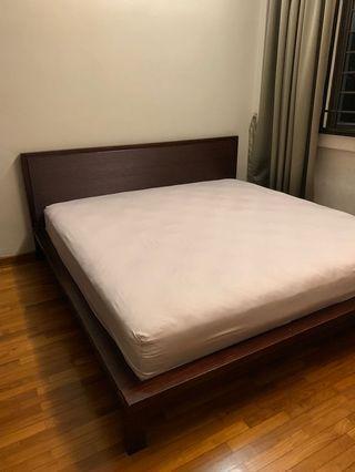 🚚 Solid Wood King Size Bedframe