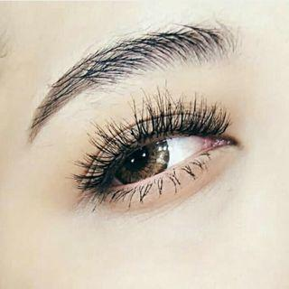 Wispies Lashes - D151