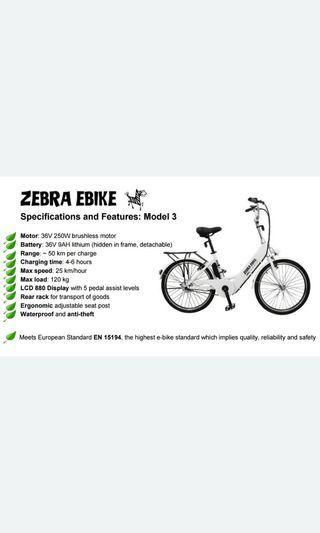 Zebra Ebike