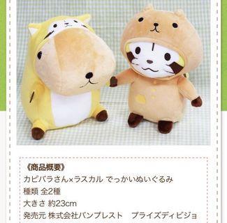 Capybara×Rascal 小浣熊 公仔