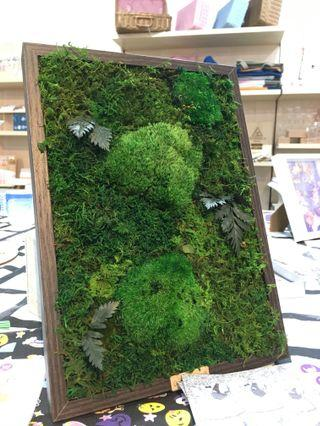 3D Green~ Real Preserved Moss Art Wall Decor Contours