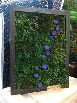 Moss Art Wall ~ Real Preserved Moss Green Eco Vertical