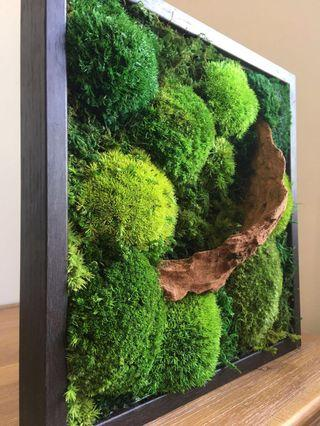 Moss Art Decor - Real Preserved Moss Green Wall Lone Wood