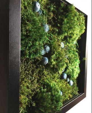 Moss Art Wall ~ REAL Preserved Moss Pebbles Eco