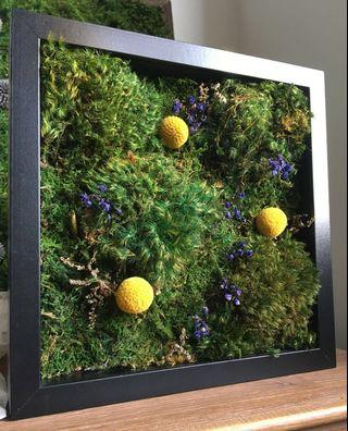 Moss 3D Decor ~ Wall Art Real Preserved Moss Garden Blooms