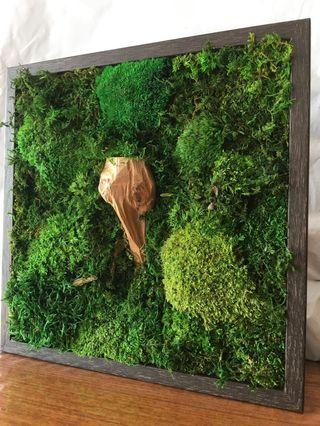 Moss Art Wall ~ REAL Preserved Moss Sandalwood Green