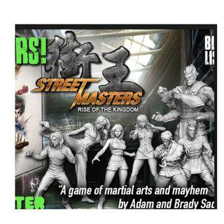 Super Street Masters Combo Tier game (ALL IN) KS edition