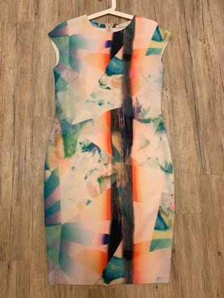 Zara Bodycon Print Dress