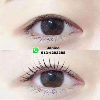 Eyelash Lifting 角蛋白翘睫术