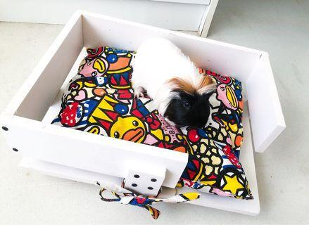 Modern looking pet bed. Can for small animal/ or kittens and doggies