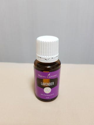 Young Living Lavender EO 15ml