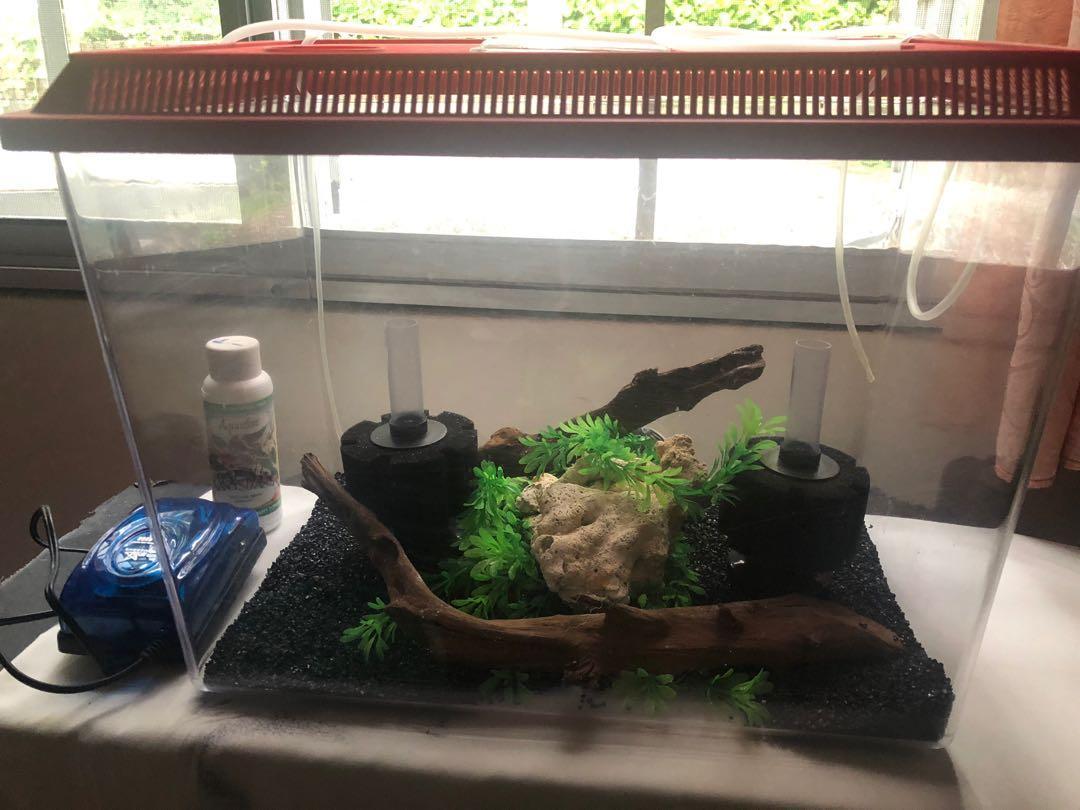 Full Aquarium Set with Black Sand
