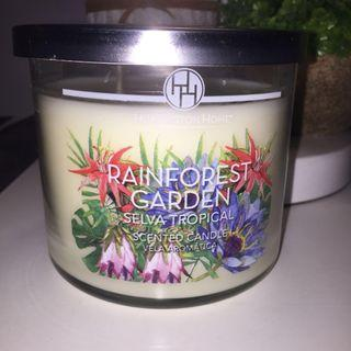Rainforest scented 3-wick candle