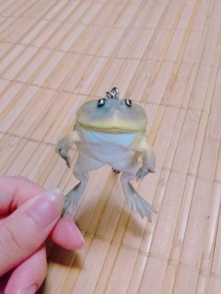 日本 奇譚 KIRAN  NTC圖鑑 小丑蛙吊飾 青蛙吊飾 扭蛋 轉蛋
