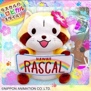 日本景品 Rascal 小浣熊拉斯卡爾 夏日 夏威夷 毛公仔