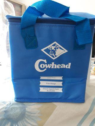 Nice Blue Thermal Bag