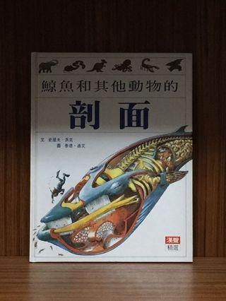 🚚 漢聲精選兒童讀物 剖面系列兩本合售