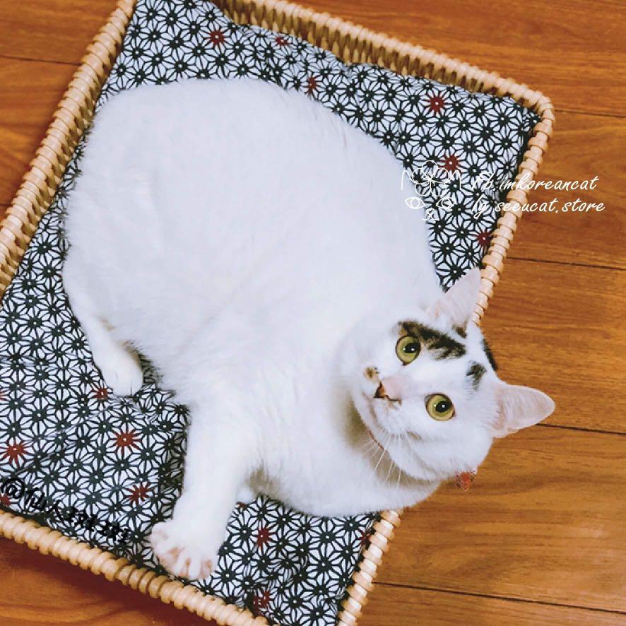 🎏手編藤寵物可拆洗床🐈8款可選