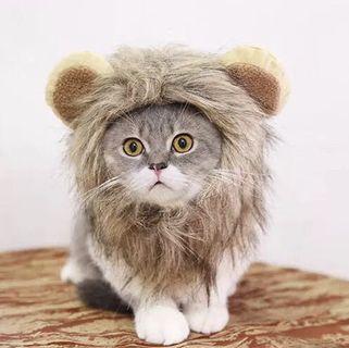 Pet Hat Cat Dog Hat Lion King PC100 #MRTPunggol