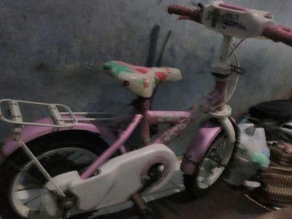 Jual sepeda mini anak