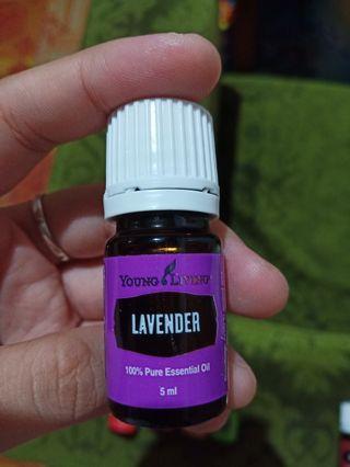 Sale!!! Lavender 5ml