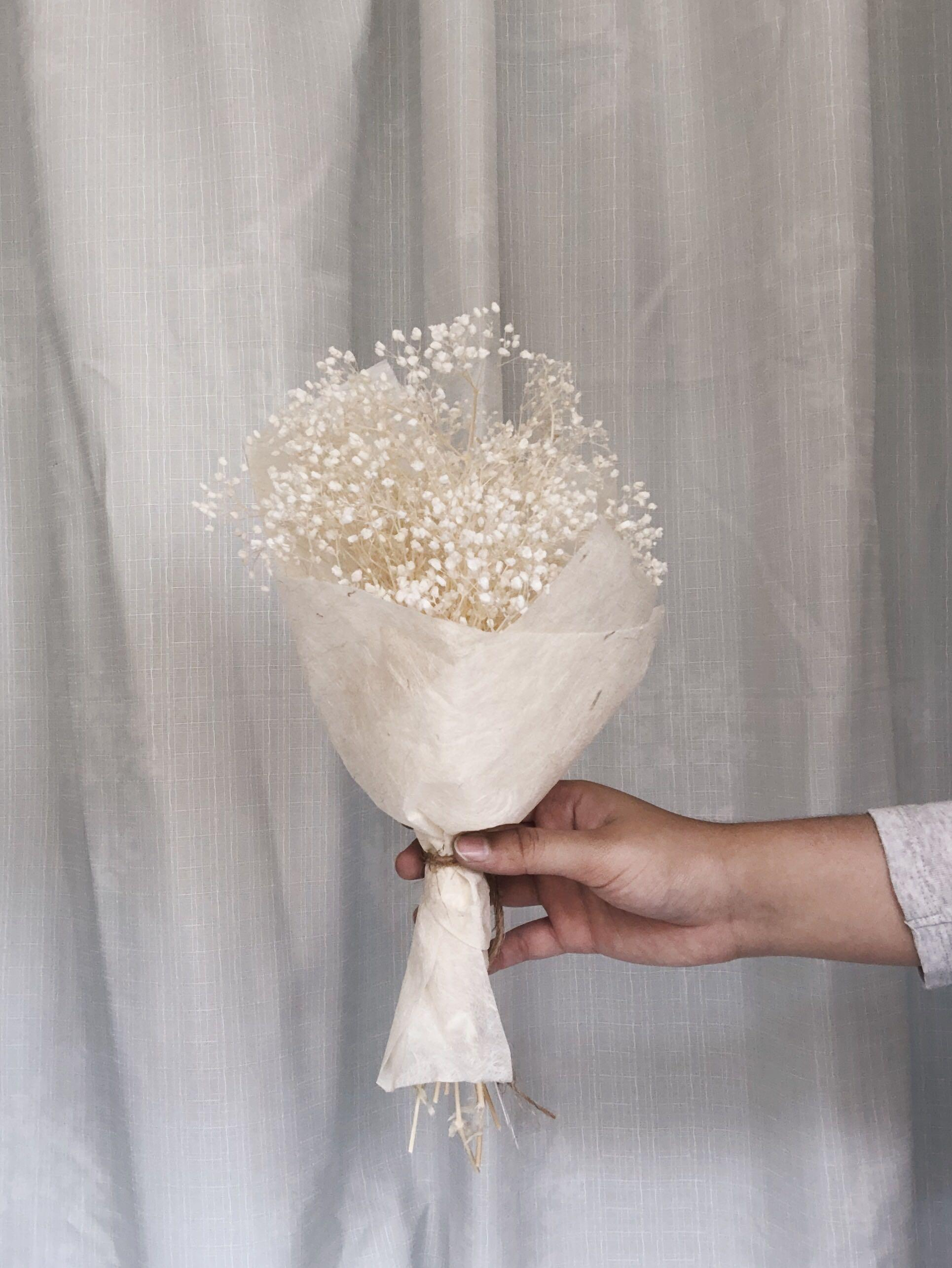 Preserved Baby Breath Bouquet Small Gardening Flowers Bouquets On Carousell