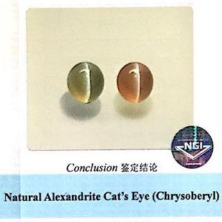 (Collector Stone) NGI Cert, Alex Catseye, 8ct plus. PM for details. Affordable for Collection. Investment stone for the future. (T0/1/3719)