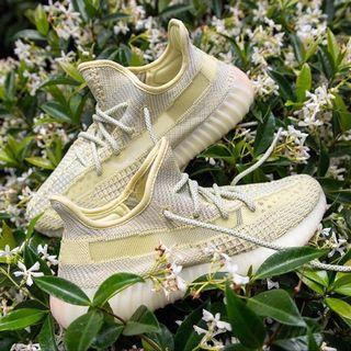 Adidas Originals Yeezy Boost 350 V2 Antlia NR US 10 US 11