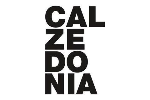 [義大利連線/代購]CALZEDONIA泳裝系列