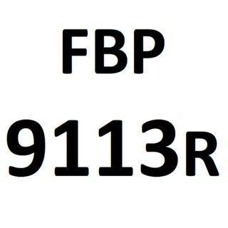 Plate number FBP 9113 R