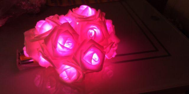 裝飾 浪漫 玫瑰花 燈飾 粉紅色 20朵