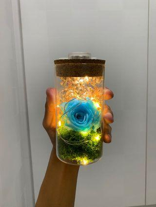 Rose and Baby Breath in light jar