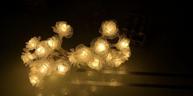 2米20燈 小玫瑰花 燈飾