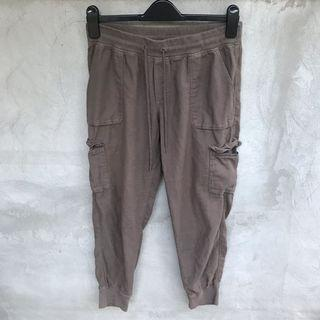 Aritzia Joggers from Community