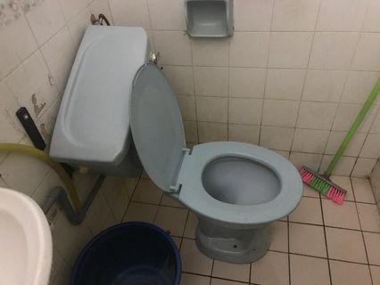 Repair toilet & plumbing