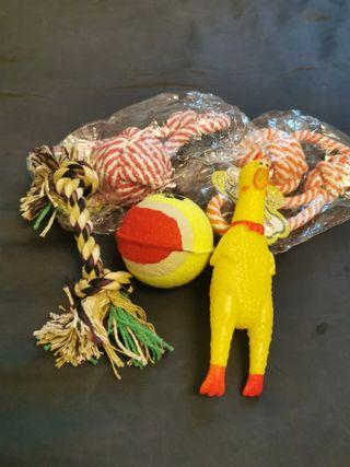 Dog Chew Toys (Rope and Squeakies)